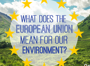 What Does European Union Mean Environment?
