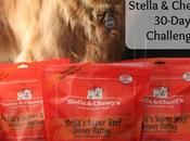 Stella Chewy's 30-Day Challenge #ChewyInfluencer