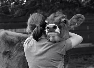 My Take on Veganism Part I: Why do it?