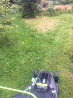 Product Review:  Gtech Cordless Lawnmower