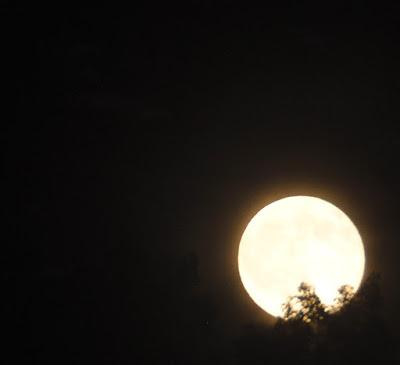 Summer Solstice Full Moon on the Rise
