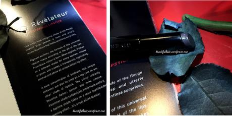 Givenchy Rouge Interdit Vinyl (5)