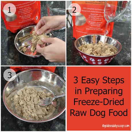 Stella and Chewys freeze dried raw dog food review