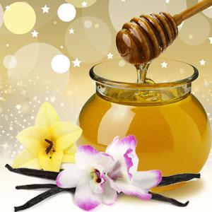 Honey Vanilla Love Dust Fragrance Oil