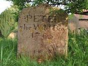 Peter Wild