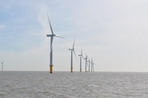 Offshore Wind Projects Clear Environmental Review
