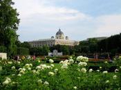 From Summer Europe, Beautiful Vienna
