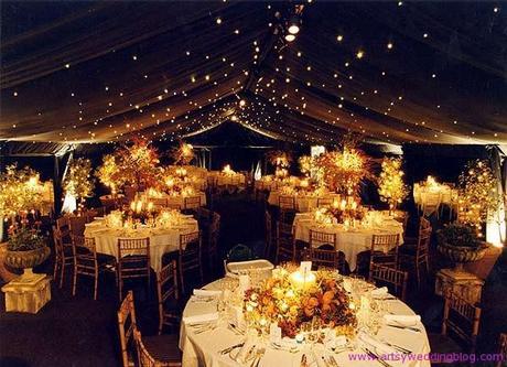Wedding decor ideas 2012 Wedding under Big Tree This is one kind of