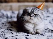 It's Birthday!!!