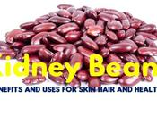 Kidney Beans Benefits Uses Skin Hair Health