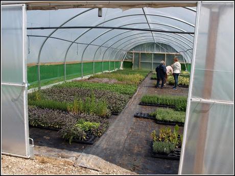 Pepperpot Nursery