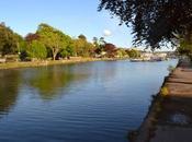 About South Devon Part