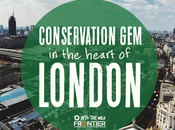 Conservation Heart London