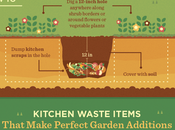Food Scraps Your Garden