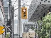 Toronto: Urban Jungle