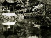Yat-Sen Classical Chinese Garden, Vancouver (Reminigrams)