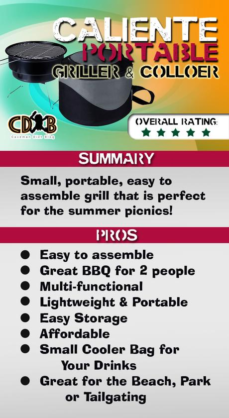 picnic time summary graphic