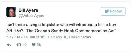 Bill Ayers gun control tweet