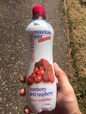 Today's Review: Mountain Mist Cranberry And Raspberry