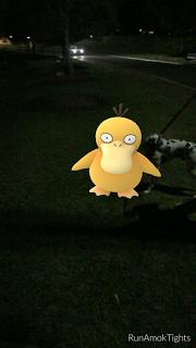 A Pokemon Go Cautionary Tale