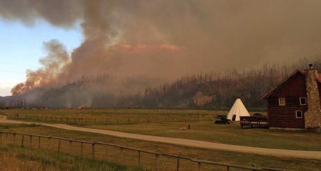 Wildfires and Wild Four O'Clocks