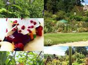 Gravetye Manor Garden Dream