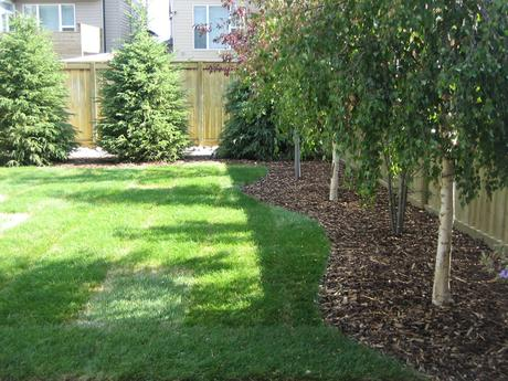 Easy Backyard Landscaping Ideas