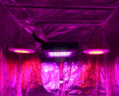 900 Watt LED Grow Light Replace 1400 Watt MH HPS System Dorm Grow