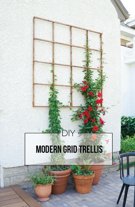 Build a Modern Grid Trellis from Garden Stakes