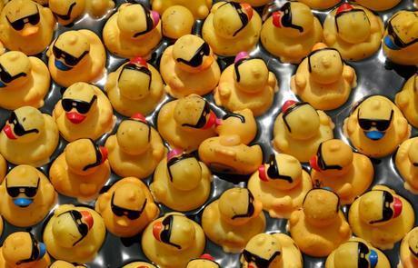 rubber ducky derby