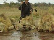 "Killing Name ""Conservation""?"