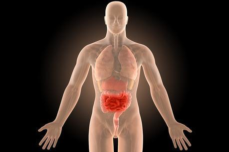 Crohn's Disease Successfully Treated With the Paleolithic Ketogenic Diet