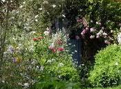 English Country Gardens.