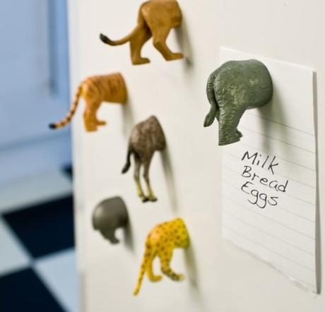 Animal Rear Ends Fridge Magnets