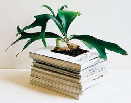 Old Magazines Used To Make a Planter