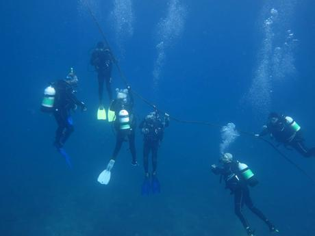 scuba diving with Turtle Bay Dive Centre and Water Sports Watamu