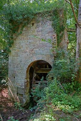 Ruins in the woods