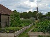 Piet Oudolf Meadow Hauser Wirth, Somerset