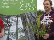 Superdry Donates £12,500 Save Scotland's Caledonian Forest
