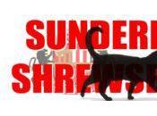 Moyes Boys: Playing Sub(s) Against Shrewsbury
