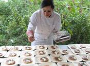 Chef's Consortium Host Farm Table Dinner Bannerman Island