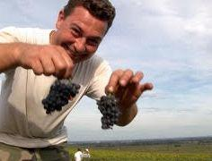 Happy Burgundy harvester. ©RudiGoldman.