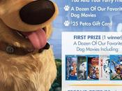 #Disney #DogDaysOfSummer #Sweepstakes #win #dogs
