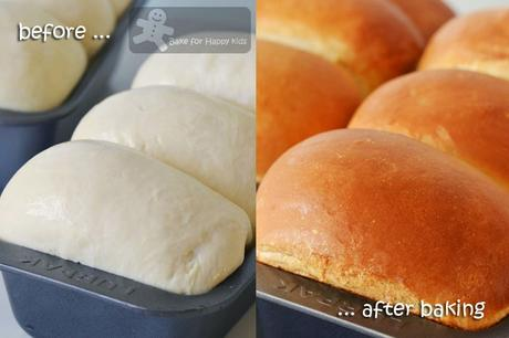 Honey Sandwich Bread - Home style and Soft! Highly Recommended!!!