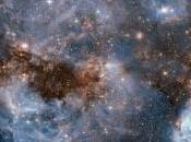 News from Around Universe