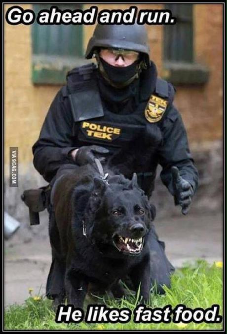 Police Humor Paperblog