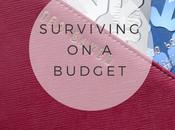 University: Suriving Student Budget