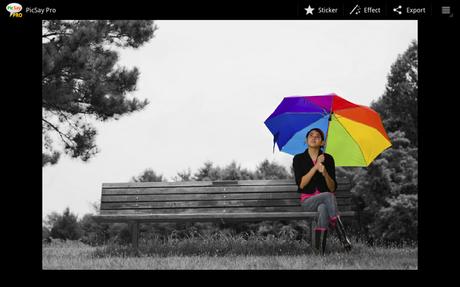 PicSay Pro - Photo Editor - screenshot