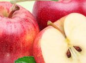 McIntosh Apple Fragrance