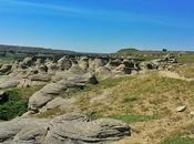 Writing-On-Stone: Explore Alberta's Treasures